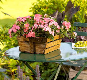Check Out Our Container Gardening Class