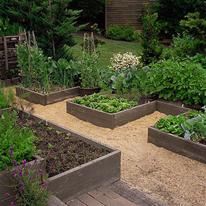 Ana white 10 cedar raised garden beds diy projects Better homes and gardens flower bed designs