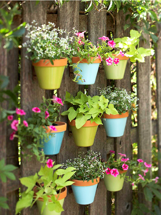 Colorful suspended flower pots