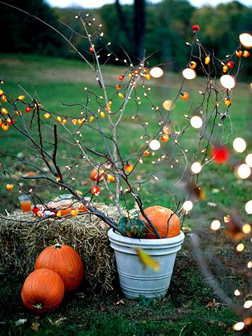 Pixtal peep autumn beauty for your yard for Decoration exterieur halloween