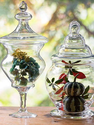 Gourds and leaves in glass jars