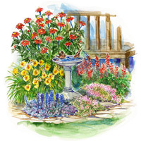 Small-Space, Drought-Resistant Garden Plan Illustration