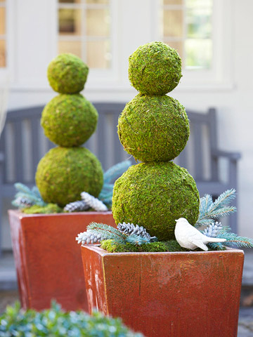 topiary container
