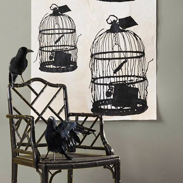 bird cages wall hanging