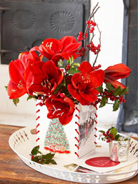 Christmas card vase with amaryllis