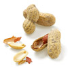 Hines Nut Company Salted Jumbo Virginia In-Shell Peanuts photo