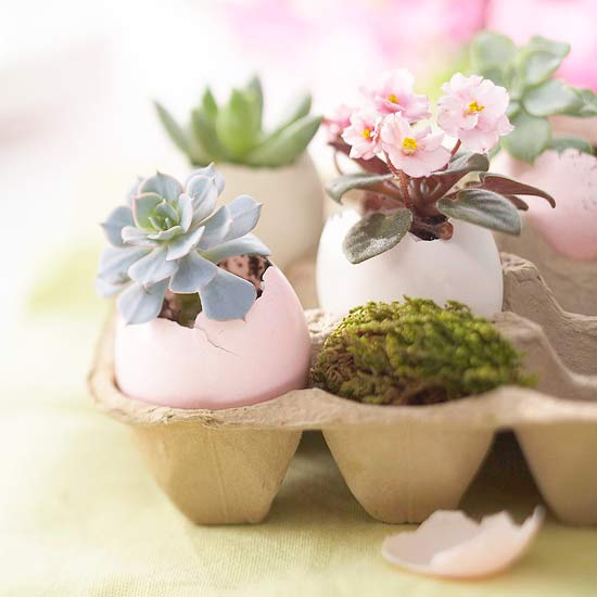 Decorative Egg Planter