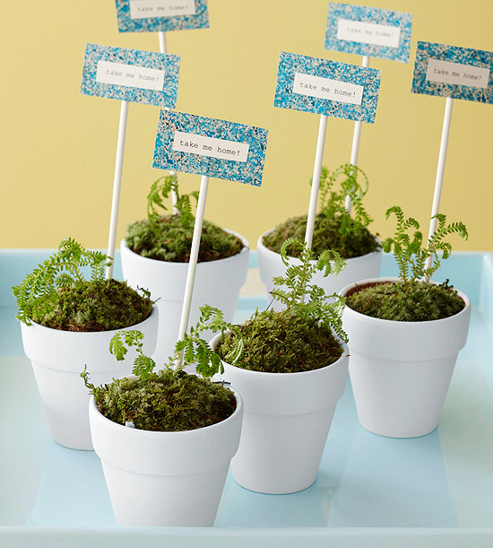 plant party favors perfect for a garden or spring party
