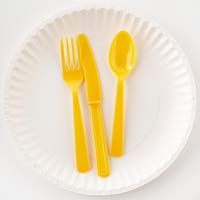 Disposable plate and silverware