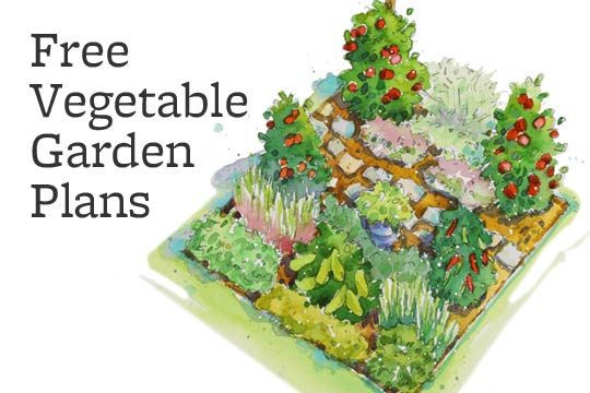 vegetable garden plans moreover - photo #21