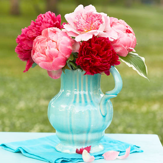 Pitcher of Peonies