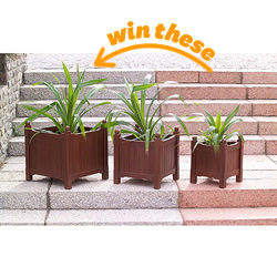 Wood Flower Box Planters - Set of 3