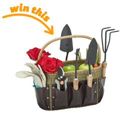 Kouboo Garden Tool Basket and Apron