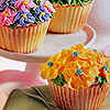 Sunshine Cupcakes