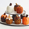 Mini Pumpkin Cakes