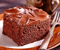Double Fudge Cake