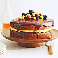 Chocolate Harvest Cake