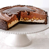 Chocolate-Peanut Ice Cream Cake