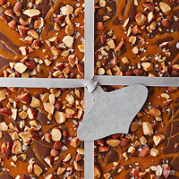Salted Dark Chocolate-Almond Bark