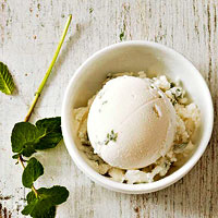 Mint Greek Frozen Yogurt