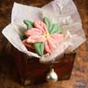Christmas Flower Cookies