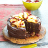 Chocolaty Harvest Fruit-Topped Cake