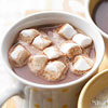 Bittersweet Hot Chocolate