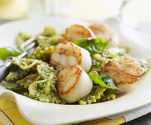 pesto scallops with toasted walnuts