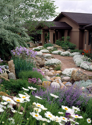 Example of natural front yard