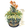 Tropical Flair Container Garden