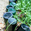 Recycled-Bottle Edging