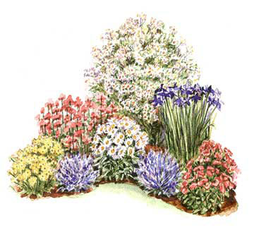 Corner of perennials for Easy perennial garden plan