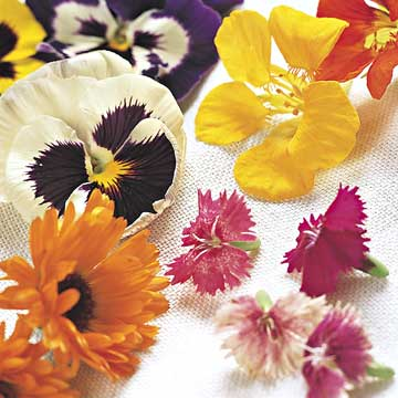 Choosing Edible Flowers