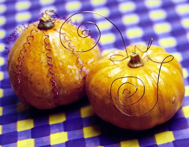 Wacky Wired Gourds