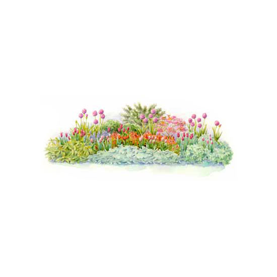 Spring Flowers And Yard Landscaping Ideas 20 Tulip Bed: Bulb Gardens For Three-Season Beauty