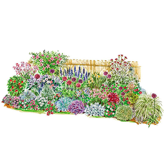 Garden Plan to Soften a Fence