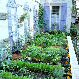 At First, When Deciding What To Plant In A Garden With Vegetables, Itu0027s  Best To Start Small. Many Gardeners Get A Little Too Excited At The  Beginning Of The ...