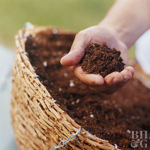 What Is Well-Drained Soil?
