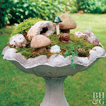 Make a Mini Garden
