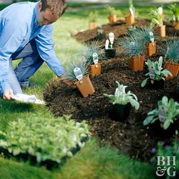 Easy Steps to Start a New Garden
