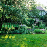 Go Organic with Your Lawn