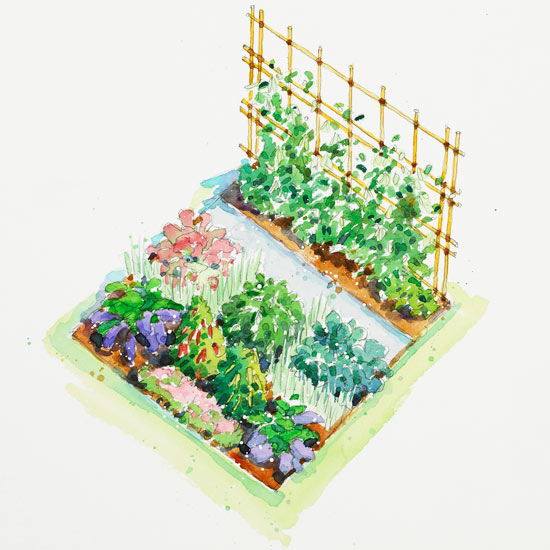Asian Inspired Vegetable Garden Plan
