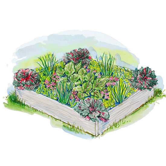 Small space vegetable garden plan ideas for Small garden plot layout