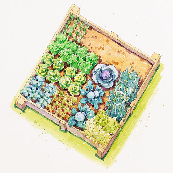 spring vegetable garden plan