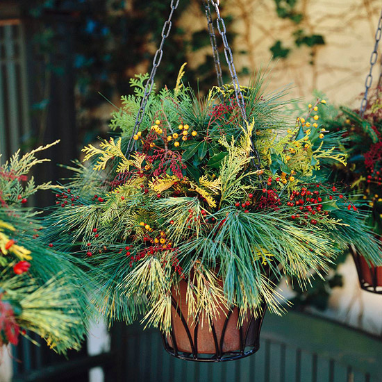 Holiday Hanging Basket