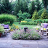 Soften the Edges of Your Patio with a Flowering Border