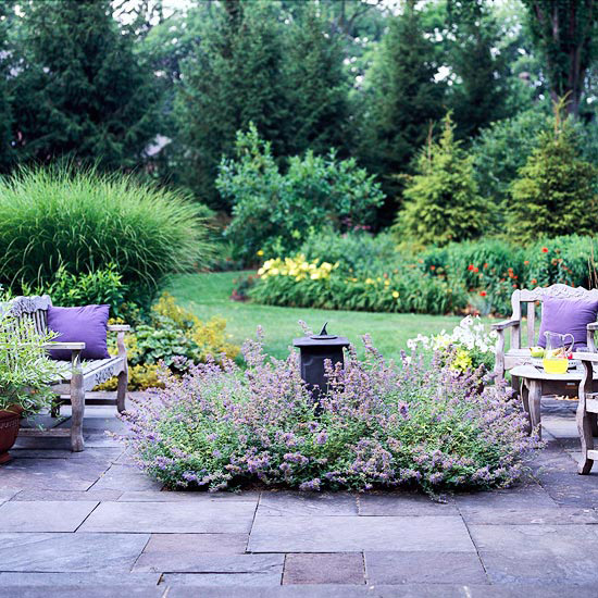 Porch Vs Deck Which Is The More Befitting For Your Home: Coppercafe: Garden Transplant: Lavender