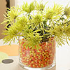 Candy Corn Jar with Mums