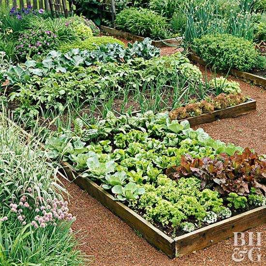 Wonderful The Goal Of Most Kitchen Gardens Is To Produce Food Efficiently And  Beautifully. Many Gardeners Choose To Create A Focal Point, Such As A  Collection Of ...