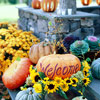 Welcoming Pumpkin Decorations